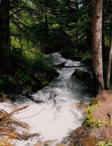 Sawmill Creek_0001